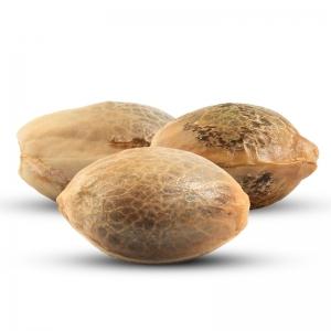 3 volné konopných semen