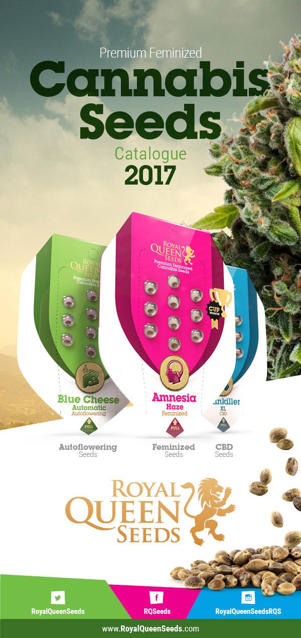Cannabis Seed katalog
