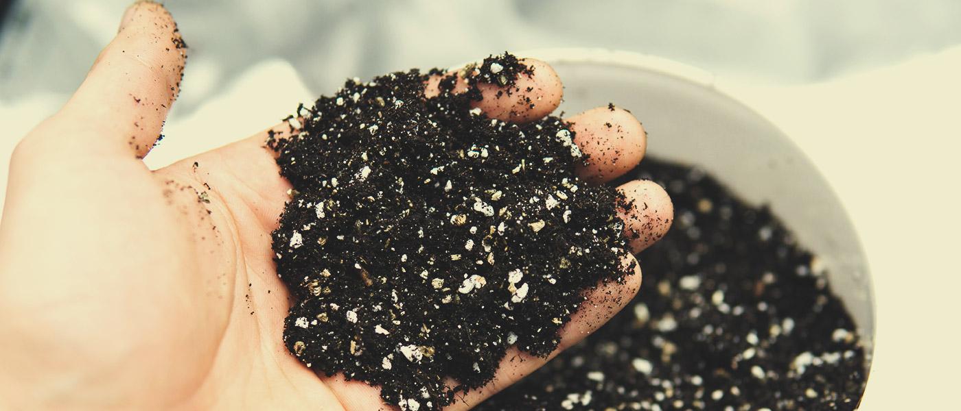 Typ Půdy