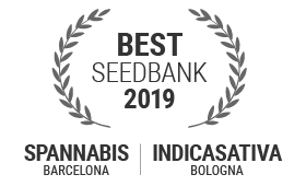Best Seed Bank