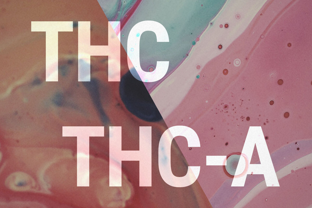 The benefits of THC-A