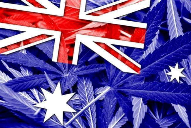 Australia Legalized the Cultivation of Medica